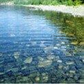 В бассейнах, озерах, реках, прудах
