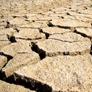 исследование грунта на засоленность