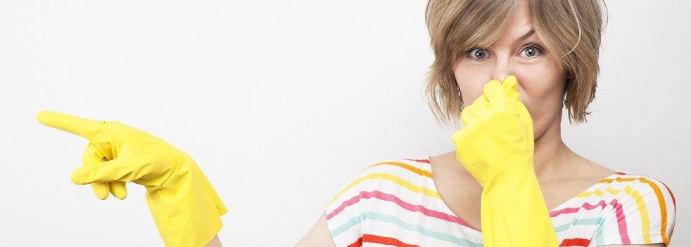 Как убрать неприятны запах в доме