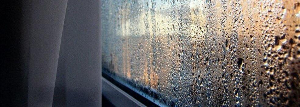 Яка повинна бути вологість повітря в квартирі (норма вологості)
