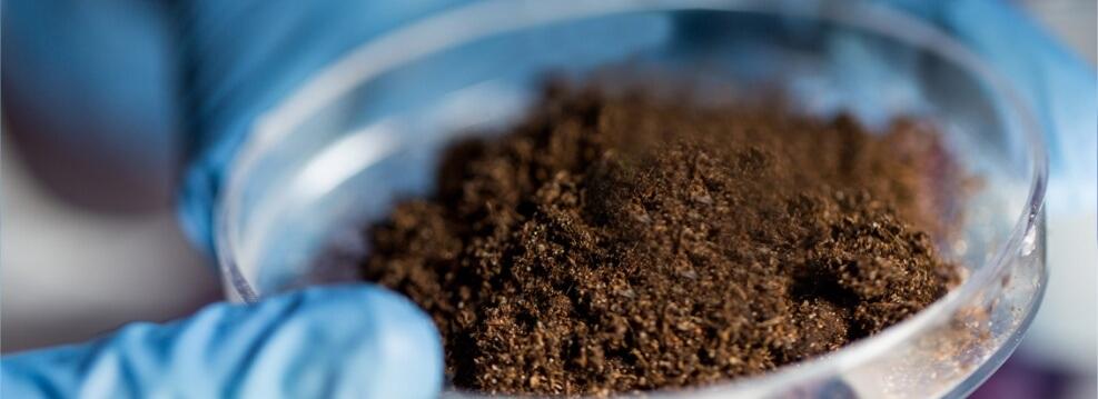 Аналіз ґрунту основні показники, розшифровка