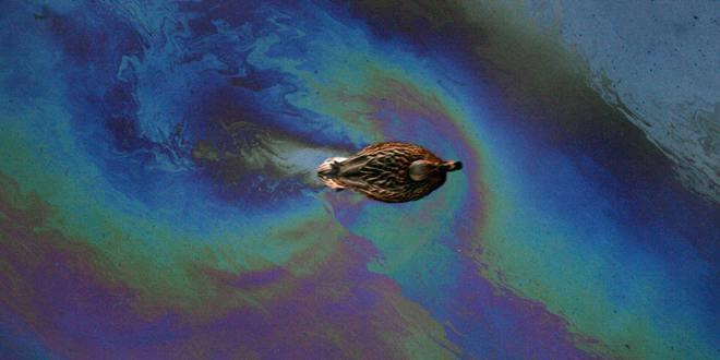 Анализ воды на нефтепродукты
