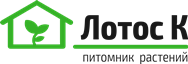 lotosk